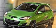 3dCarbon Mazda 2 2011
