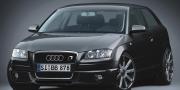 B&B Audi A3 8P