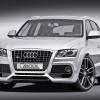 Caractere Audi Q5 2009