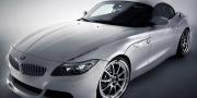 MWDesign BMW Z4 White Flame 2011
