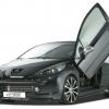 RDX Racedesign Peugeot 207 2010