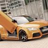 Rieger Audi TT 2011
