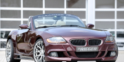 Rieger BMW Z4 E85 2010