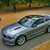 Saleen Ford Mustang S281 Scenic Roof 2006