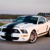 Shelby Ford Mustang GT500 Super Snake