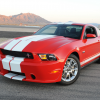 Shelby Ford Mustang GTS 2011