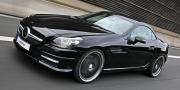 VATH Mercedes SLK R172 2012
