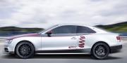 Audi S5 Eibach Project Car 2012
