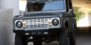 Icon Ford Bronco 2011