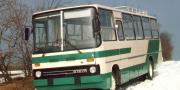 Ikarus 259