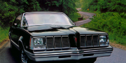 Pontiac Grand Am Coupe 1978-1980