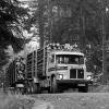 Scania LS140 Timber Truck 1968-1972