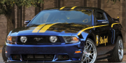 Ford Mustang GT Blue Angels 2011