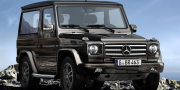 Mercedes g-klasse g-350 bluetec special vaz final edition 2011