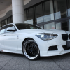 3D Design bmw 1 series m sport f20 2012