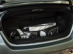Nissan Murano CrossCabriolet 2010 Photo 30
