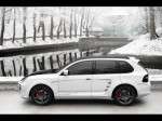 Porsche Cayenne TopCar Adv.1 2010 Photo 05
