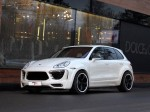Met-R Porsche Cayenne Radical Star 958 2010 Photo 12