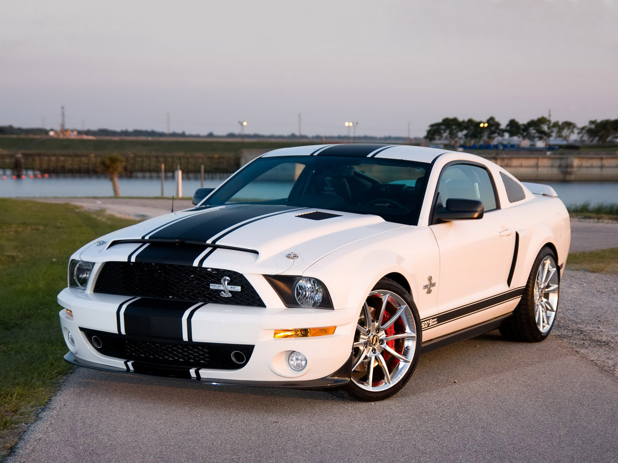 Shelby Ford Mustang GT500 Super Snake Shelby Ford Mustang GT500 Super