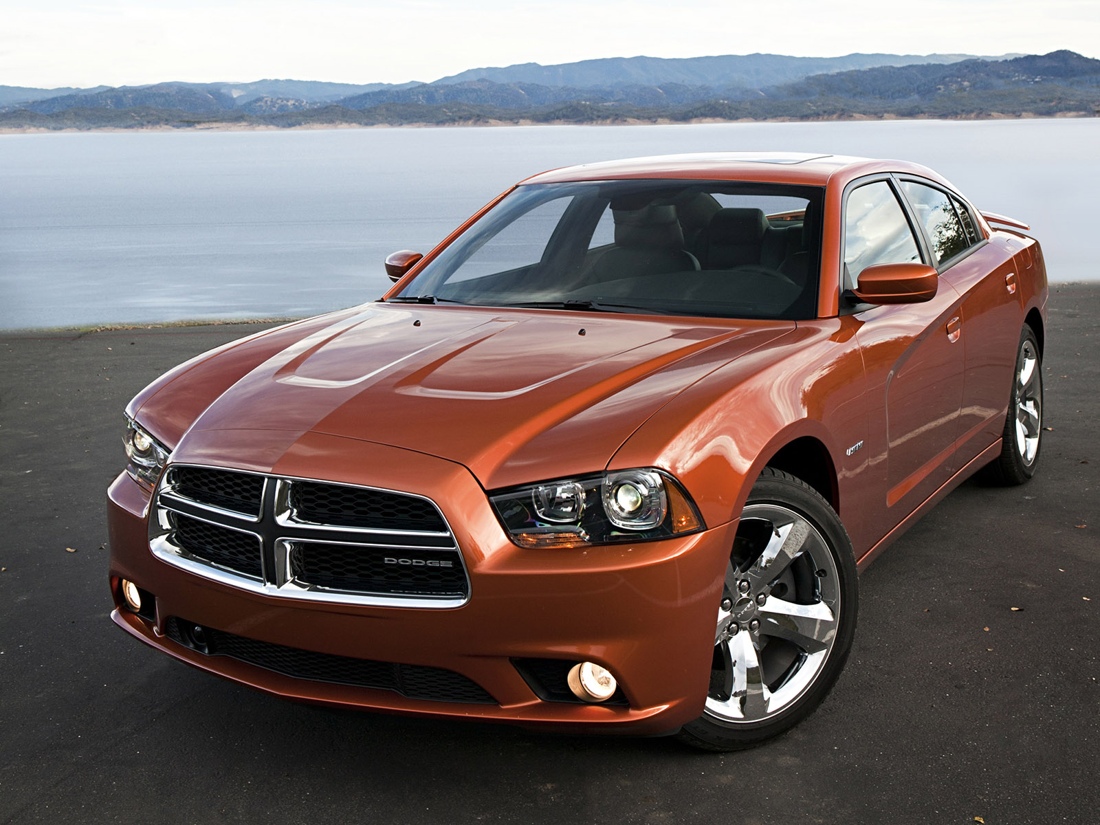 dodge charger rt 2010 dodge charger rt 2010 photo 13 car in pictures car photo gallery. Black Bedroom Furniture Sets. Home Design Ideas