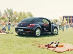 Volkswagen beetle fender edition 2012 Photo 03