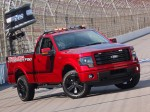 Ford F-150 Tremor EcoBoost NASCAR Pace Truck 2014 Photo 04