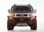 Toyota FJ Cruiser Trail Teams Ultimate 2014 photo 02